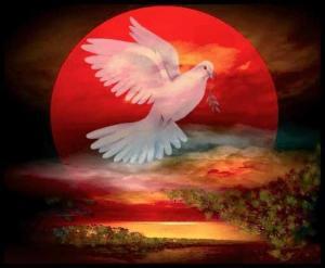 mensajeros de paz