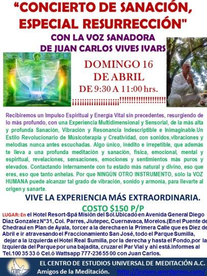 poster concierto de sanacin 16 de abril