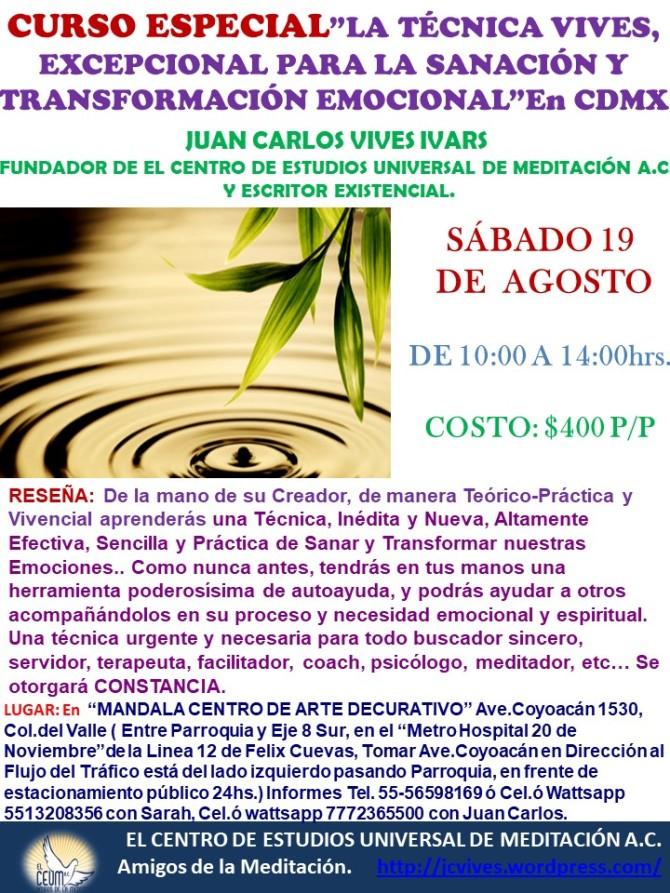 Curso TECNICA VIVES 19 DE AGOSTO.