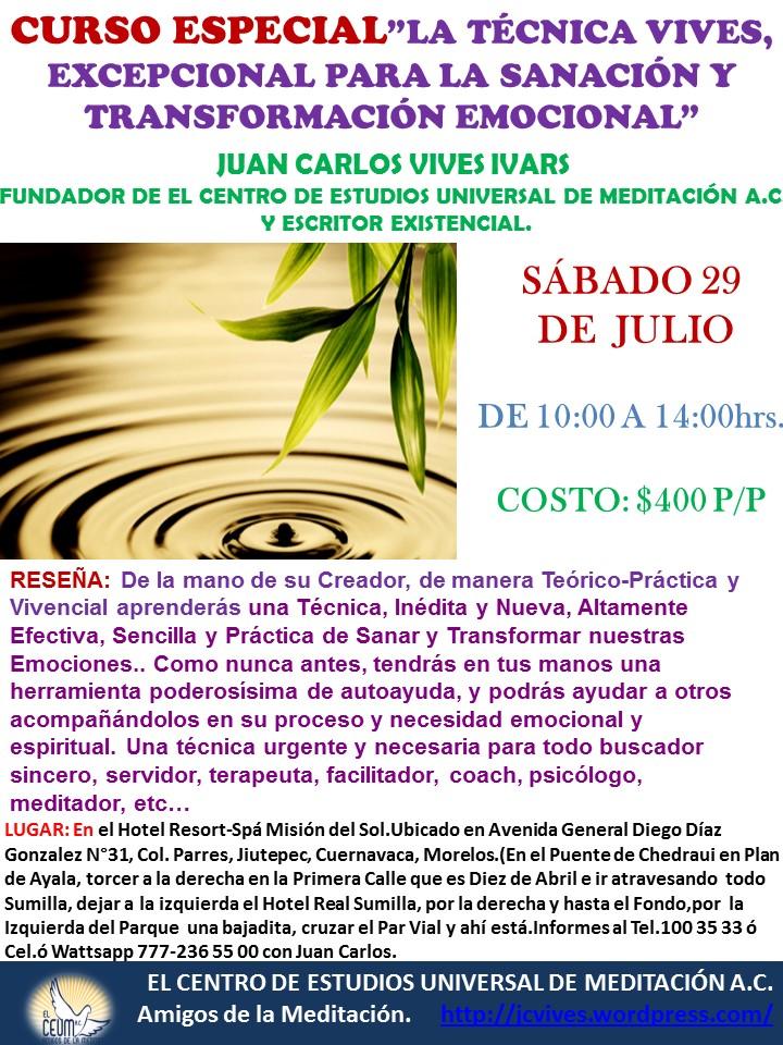 Curso TECNICA VIVES 29 DE JULIO