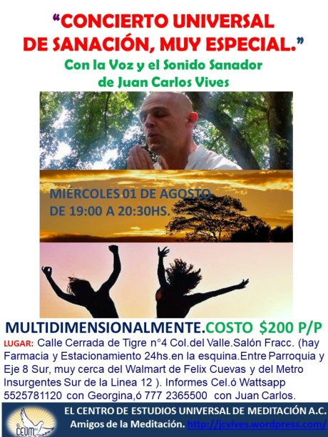 Poster Concierto de Sanación 01 de Agosto. Tigre 4.