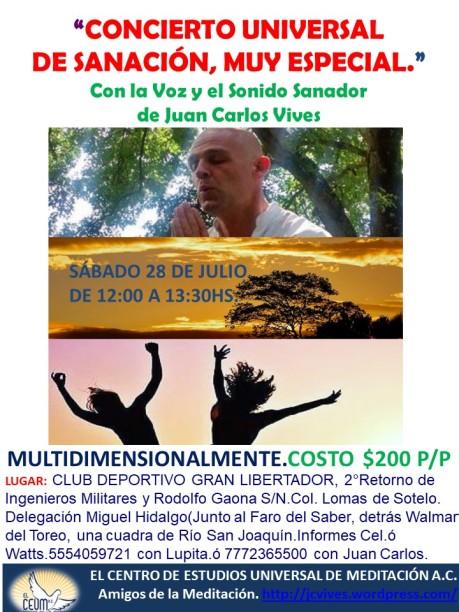 Poster Concierto de Sanación 28 de julio. Lomas de Sotelo.